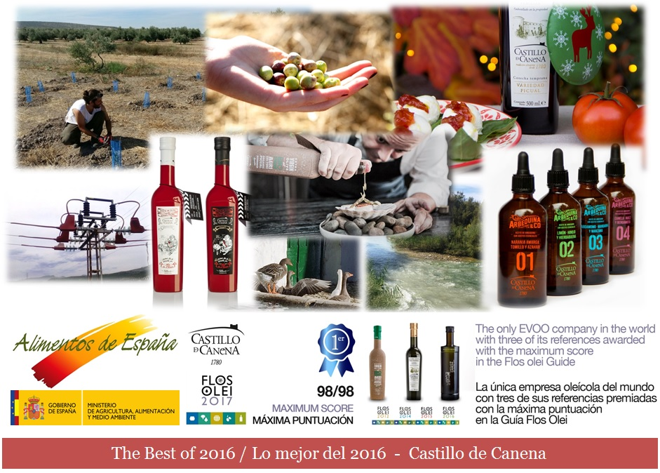 the_best_2016_castillo_de_canena