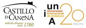 UNIA-castillo de canena2