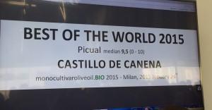 AOVE_EVOO_Celleti_Monocultivar_CastillodeCanena_1
