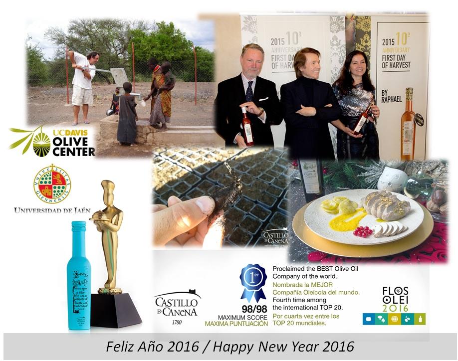 2016_Año_Nuevo_New_Year_Castillo_De_Canena
