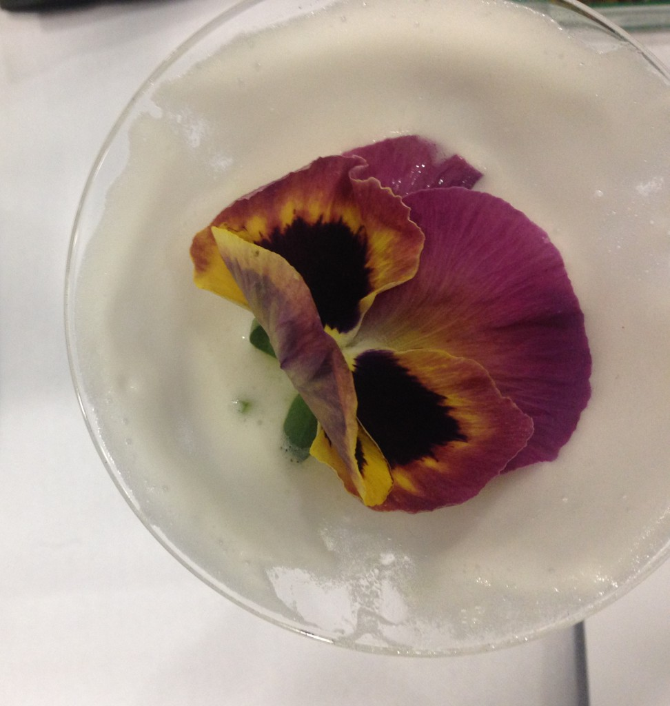 Cocktails_Flower_Aove