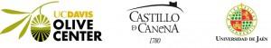 Castillo_Canena_UD_Davis_Universidad_Jaen