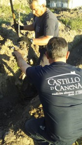 Abadia_Retuerta_Castillo_de_Canena (4)