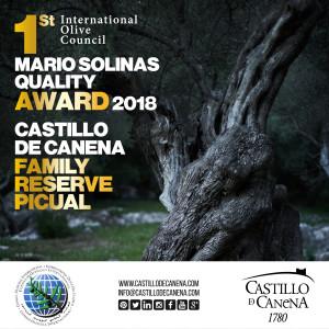 MARIO_SOLINAS_2017_ENG